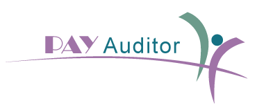 Professional Pay Audit services, Pay auditing